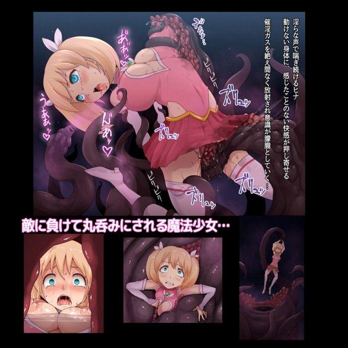 魔法少女ヒナ 肉蝕淫獄のエロ同人CG画像 1