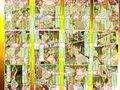 世にも鬼畜な物語 人間家畜牧場_同人ゲーム・CG_サンプル画像03