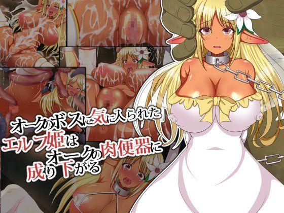 オークのボスに気に入られたエルフ姫は肉便器に成り下がる。