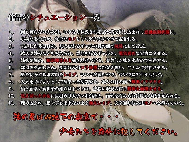 壁埋女学園 〜埋め込まれ 陵辱される 少女たち〜 画像1