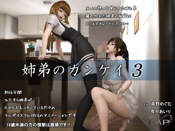 『姉弟のカンケイ3』ダウンロード用の画像。