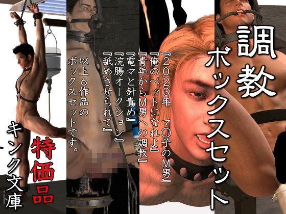 【電 同人】調教ボックスセット特価版