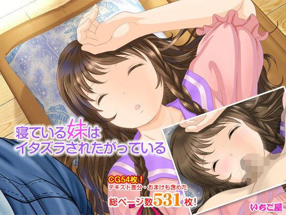 寝ている妹はイタズラされたがっているの表紙