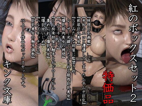 【キンク文庫 同人】紅のボックスセット2特価版