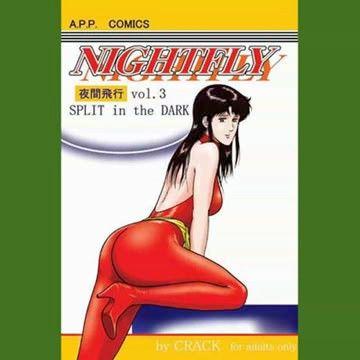NIGHTFLY vol.3