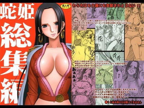 蛇姫総集編 表紙