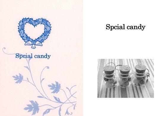 【進撃の巨人同人】Spcial candy