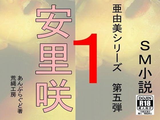 【荒縄工房 同人】安里咲1
