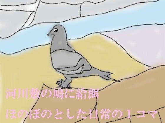 【オリジナル同人】ワンコイン小説 河川敷の鳩に給餌 ほのぼのとした日常の1コマ
