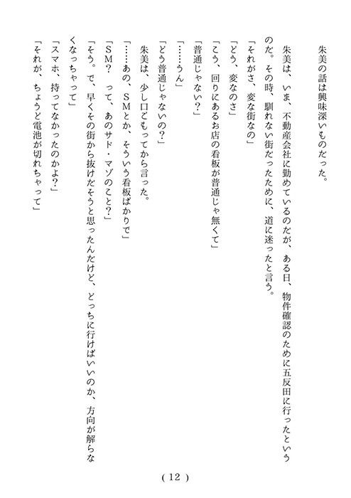 [同人]「スケバン柳子・十年目の真実」(池尻秘密倶楽部)