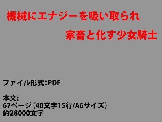 d_081661pl.jpgの写真