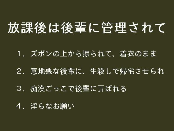 d_087795pl.jpgの写真