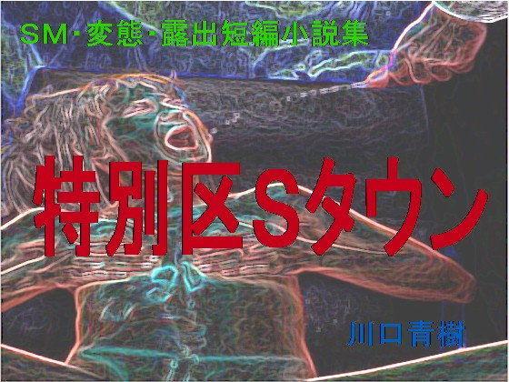 HusufengNurse SM (台湾) 001