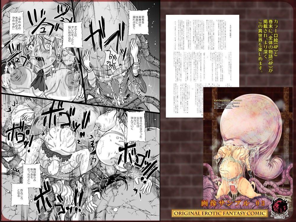 [同人]「丸呑み城の姫騎士」(Erotic Fantasy ラーバタス)