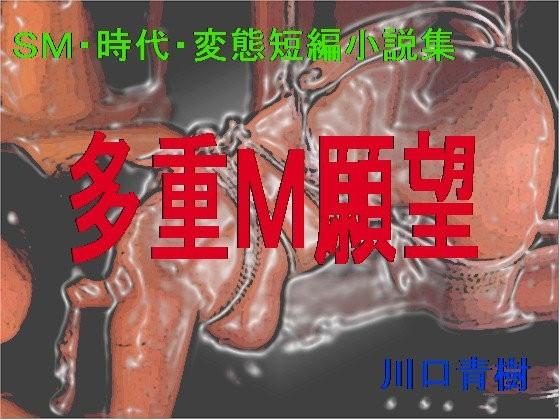 【Mドリーム 同人】SM・時代・変態短編小説集「多重M願望」