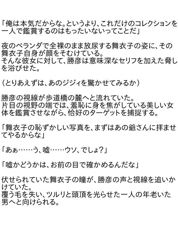 漏れちゃう~営業ガール・涙の恥辱責め3