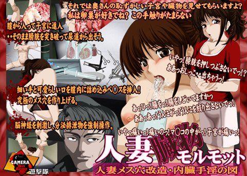 【オリジナル同人】人妻臓物モルモット