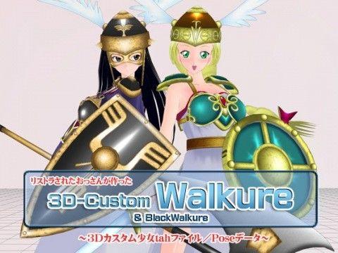【ゲーム系同人】3Dカスタム-Walkure