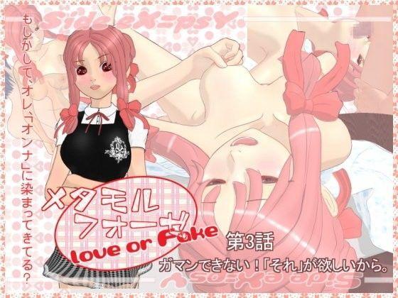 メタモルフォーゼ Love or Fake 第3話