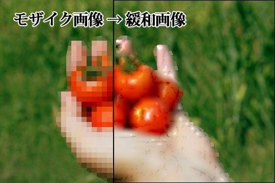 d_076686jp-002.jpgの写真