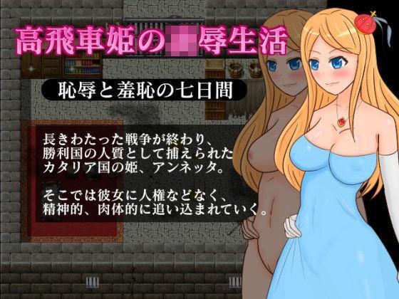高飛車姫の凌辱生活〜恥辱と羞恥の七日間〜の表紙