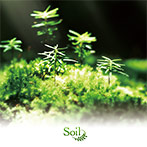 Rewrite Arrange Album 'Soil'