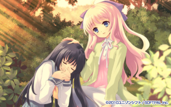 Flyable Heart CompletePack12