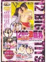 (104bibd02)[BIBD-002] 12個の激巨乳 露出レズビアン編 Vol.2 ダウンロード