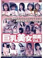 巨乳美女図鑑 Vol.2 ダウンロード