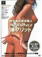 欧米桃尻排泄美人 排ブリット VOL.2 ダウンロード