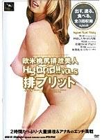 欧米桃尻排泄美人 排ブリット VOL.5 ダウンロード