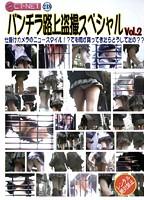 パンチラ路上盗撮スペシャル VOL.2