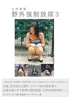(111bztp00003)[BZTP-003] 公然猥褻 野外強制放尿 3 ダウンロード