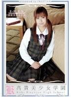高貴美少女学園 14 ダウンロード