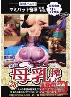 「奥様 母乳搾りコレクション 28」のパッケージ画像