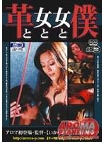 「革と女と女と僕」のパッケージ画像