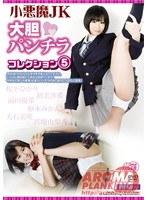 【予約】小悪魔JK 大胆パンチラコレクション 5