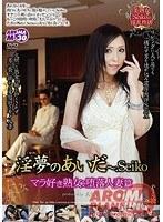 「淫夢(ゆめ)のあいだ ~.Seiko マラ好き熟女 堕落人妻篇」のパッケージ画像