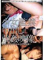 「少女監禁中出し強姦映像」のパッケージ画像