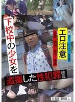 下校中の少女を盗撮した性犯罪映像 ダウンロード
