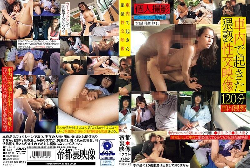 車内で起きた猥褻性交映像 パッケージ画像