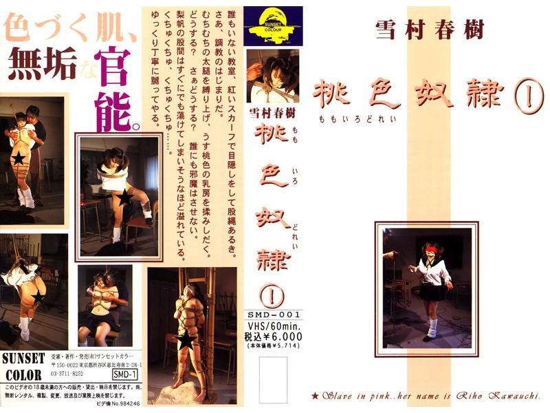 桃色奴隷(1)