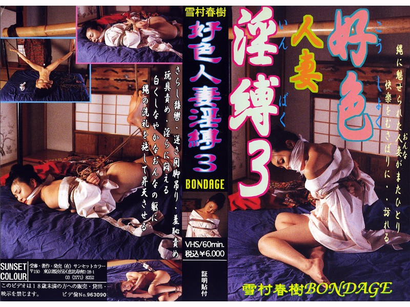 浴衣の人妻、中澤涼子出演のバイブ無料熟女動画像。好色人妻淫縛3