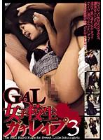 GAL女子校生ガチレイプ 3