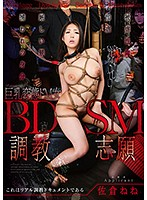 BDSM調教志願 佐倉ねね ダウンロード