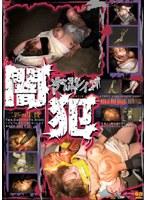 「闇犯 二匹の生贄 号泣レイプ 11」のパッケージ画像