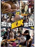 「痴漢飢獣(ケダモノ)集団 18」のパッケージ画像