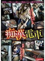 「痴漢電車 TFR-001」のパッケージ画像