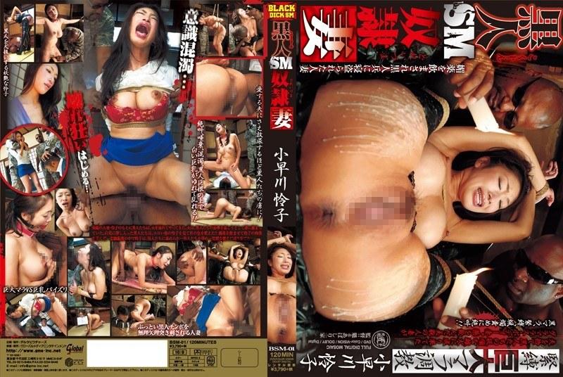 巨乳の熟女、小早川怜子出演の奴隷無料動画像。黒人SM奴隷妻 小早川怜子