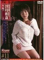 (143sld33)[SLD-033] 新近親遊戯 淫母相姦 #11 坂下陽子 ダウンロード